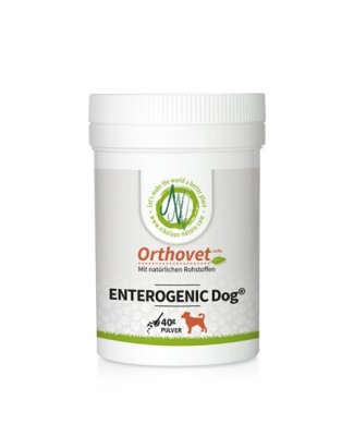 Orthovet Enterogenic Dog (Aufbau Darmflora)